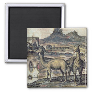 137-0627924 Illustration from a history of Peru sh Square Magnet