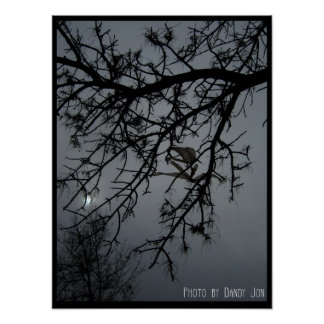 A Gothic Night Poster
