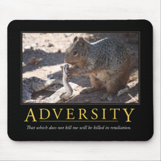 Adversity Demotivational Mousepad