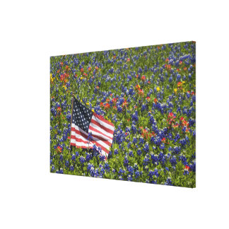 American Flag in field of Blue Bonnets, 2 Canvas Prints