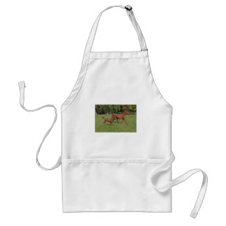 Arabian Horses Running - Mom and Foal Standard Apron