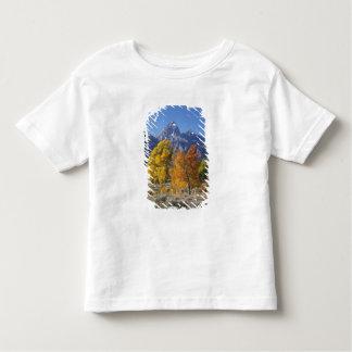 Aspen trees with the Teton mountain range 6 T-shirt