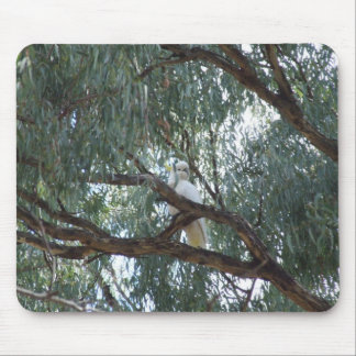 Australian Wildlife Cockatoo Mousepad