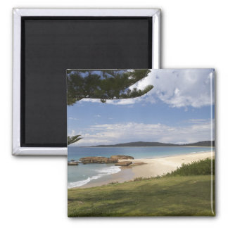 Beach, South West Rocks, New South Wales, Square Magnet