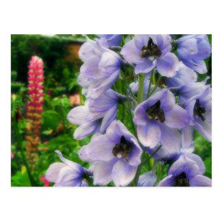 Blue Delphinium Postcard
