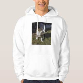 Brother Hooded Pullover