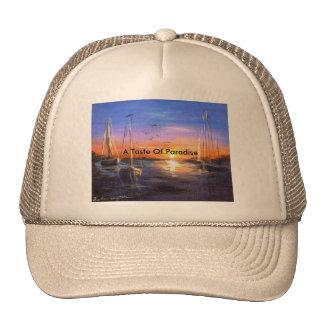 Chapeau fait sur commande de camionneur de photo casquettes de camionneur