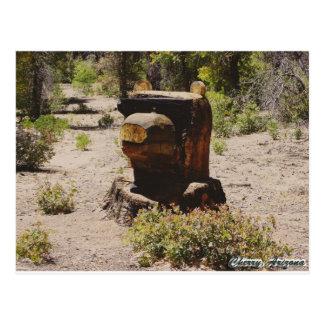 Cherry, Arizona Postcard