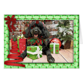 Christmas - Portuguese Water Dog - Lucy Greeting Card