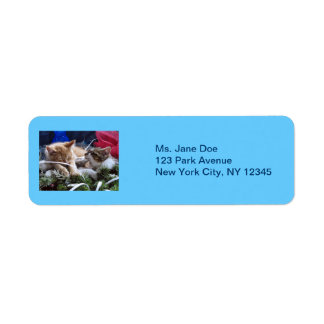 Cool Snow Cats, Two Kittens in Love, Winter Skates Return Address Label