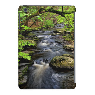 Creek flows through forest iPad mini retina case