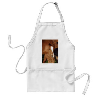 Cute brown foal standard apron