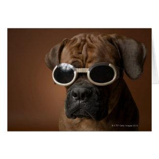 Dog wearing sunglasses greeting card
