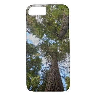 Douglas Fir tree canopy iPhone 7 Case