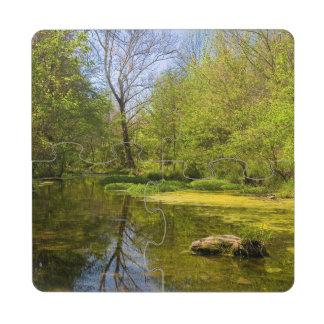 Early Spring Along Creek Near Nashville Puzzle Coaster