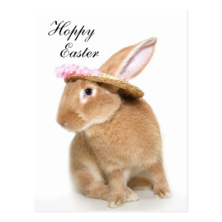 Easter Bunny's bonnet Postcard