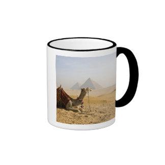 Egypt, Cairo. A lone camel gazes across the Ringer Coffee Mug