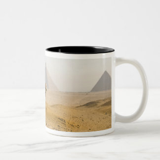 Egypt, Cairo. A lone camel gazes across the Two-Tone Coffee Mug