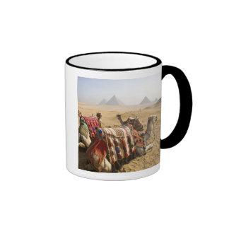 Egypt, Cairo. Resting camels gaze across the Ringer Coffee Mug