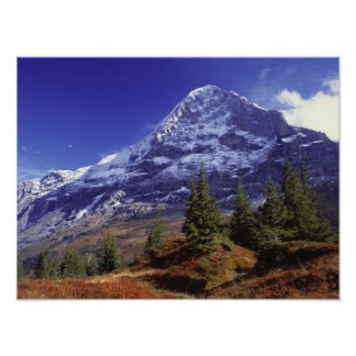 Europe, Switzerland, Eiger. Fall colors abound Poster