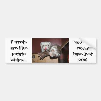 Ferret Bumper Sticker