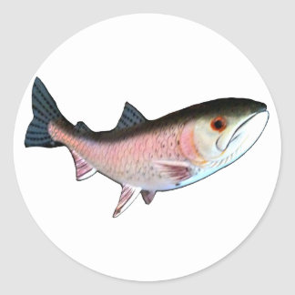 Fish PinkThe MUSEUM Zazzle Gifts Round Sticker