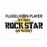 Flugelhorn Player Rock Star by Night Postcard