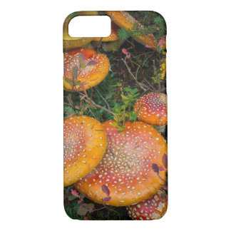 Fly agaric mushrooms at Mowich Lake iPhone 7 Case