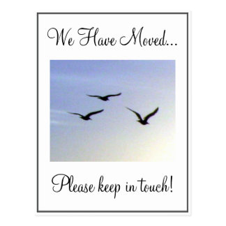 Flying Birds Change of Address Postcard