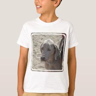 Gorgeous Weimaraner T-shirts