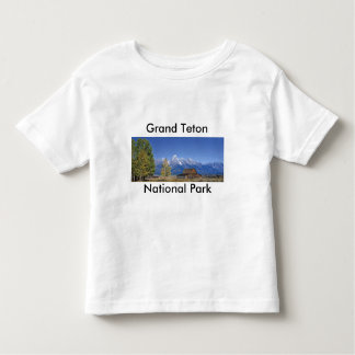 Grand Teton National Park Series 5 T Shirt