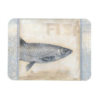 Grey Fish on Beige Background Rectangular Photo Magnet