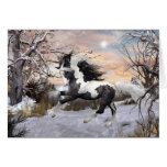 Gypsy Vanner Horse Holiday Card