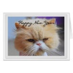 Happy New Year Persian Cat Humour Greeting Card