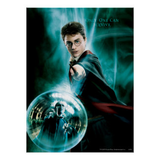 Harry Potter and Voldemort Only One Can Survive Poster