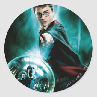 Harry Potter and Voldemort Only One Can Survive Round Sticker