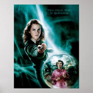 Hermione Granger and Professor Umbridge Poster