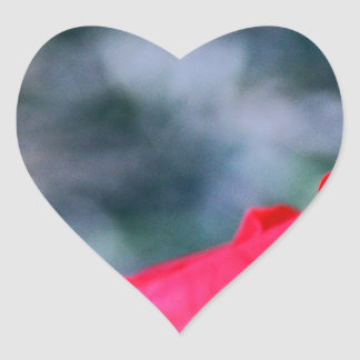 Hibiscus 4 heart sticker
