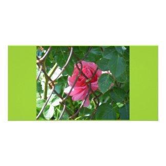 Hidden Gem Photo Greeting Card
