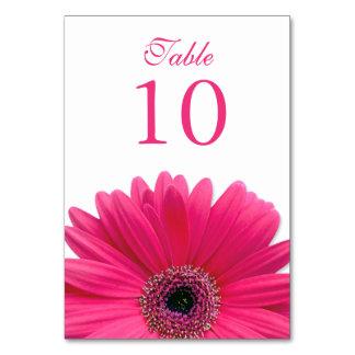 Hot Pink White Gerbera Daisy Wedding Table Card