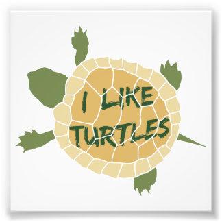 I Like Turtles Photo Art