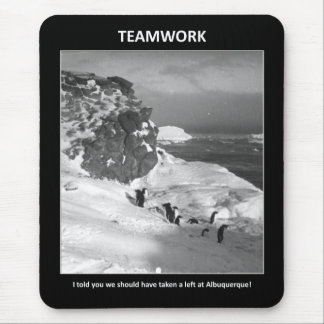 i-told-you-we-should-have-taken-a-left mouse pad