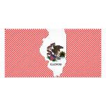 Illinois Flag Map Photo Card