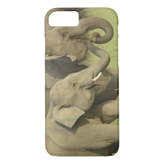Indian / Asian Elephant asking for food;Corbett iPhone 7 Case