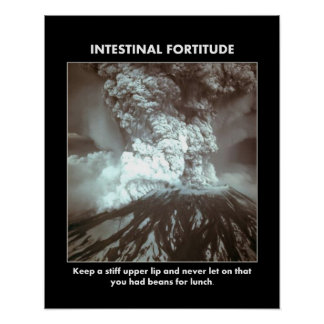 intestinal-fortitude-keep-a-stiff-upper-lip poster