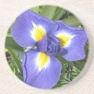 Iris Beverage Coaster