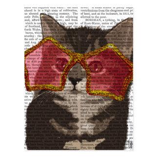 Kitten in Star Sunglasses Postcard