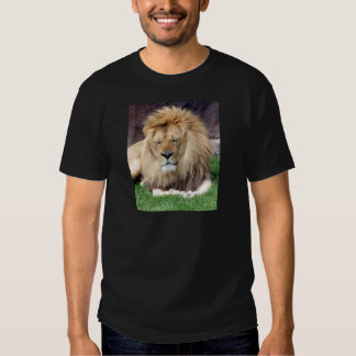 Lion Around Shirt