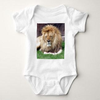 Lion Around Tees