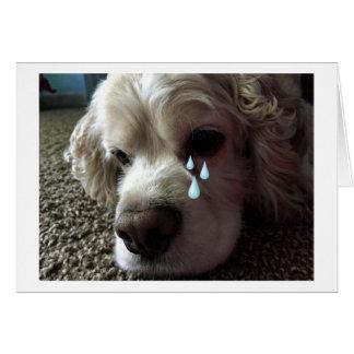 "LOSS OF ""FAMILY PET"" SYMPATHY CARD"